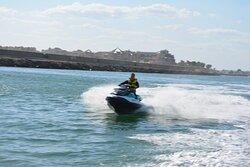 Siente la libertad de cabalgar por el mar