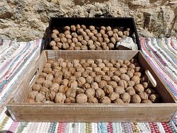 Walnuts drying on the sun... one of the many fruits and nuts that grow in the village