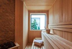 Executive suite Sauna