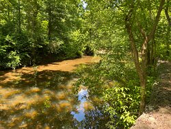 Rittenhouse Park creek