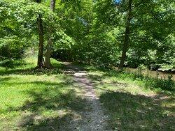 Rittenhouse Park dirt footpath along creek