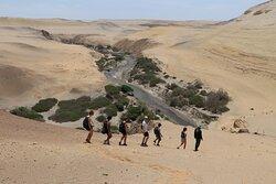 cañón de los perdidos haciendo la caminata al rio Ica