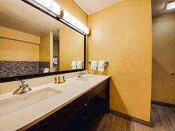 Large Suite Bathroom