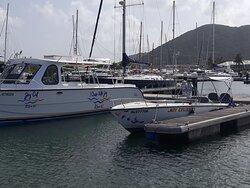 Joy's Adventure Excursion and Coastal Cruise