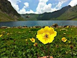 Beautiful Khasmir