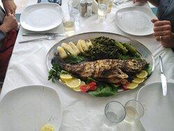 #freshlocalfish