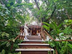 ผู้ที่เข้าพักที่นี่ต้องตระหนักรู้และมีส่วนร่วมในการรับผิดชอบต่อธรรมชาติและเรียนรู้ที่จะรักและเคารพพร้อมอยู่ร่วมกับธรรมชาติได้อย่างเป็นมิตรต่อสิ่งแวดล้อม โรงแรมเฟิร์นริมธาร แม่ฮ่องสอน เป็นหนึ่งในตัวเลือกอันดับต้นที่ นักท่องเที่ยวชาวไทยที่หลงใหลกับแมกไม้และธรรมชาติและนักท่องเที่ยวชาวต่างชาติเกือบ100%นิยมมาพักที่นี่กันครับ