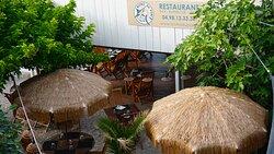 Bistro du Port Parasol & Ambiance tropicale