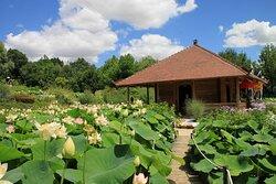 Jardins des Martels- Le temple du Lotus
