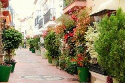The Garden of the Costa del Sol!