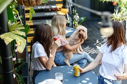 Did you know we're dog friendly?
