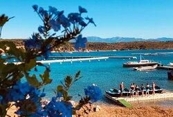 Départ pour une randonnée d'1h30, vous naviguerez dans les eaux transparentes des îles Lavezzi en passant par Cavallo et la magnifique plage de Piantarella !