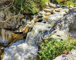 Recorrido circular 8 kms junto al río Eresma 🏞️
