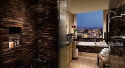 Bdrm Penthouse Bathroom