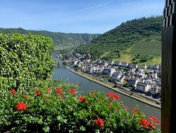 View of the Mosel.