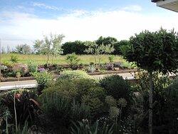 Garden view left hand side