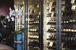 Caper Grill Wine Refrigerators