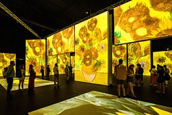 Immerse yourself in some of Van Gogh's most famous paintings
