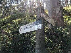 Y bien señalizado, porque ofrece varias sendas para caminar