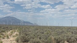 The windmills in the valley