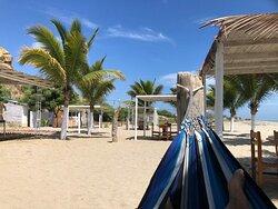 Hamacas y sombrillas en playa