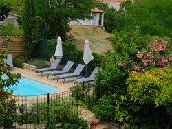 Beautiful pool and garden