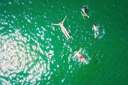 Blue Swimmer Adventure