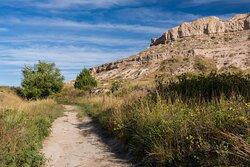 The Still Visible Oregon Trail
