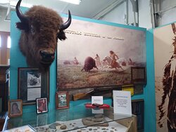 Native American history and bison