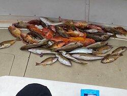 Quality fishing!