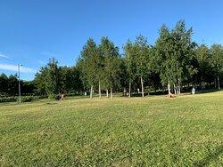 Территория парка 300-летия Санкт-Петербурга