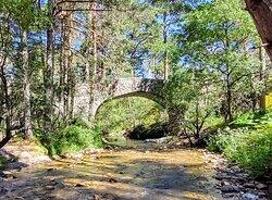 Eresma river 🏞️ navalcarreta bridge