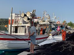 Begutachten des Ertrages beim Entladen des Fischzuges