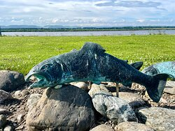 """Rather ferocious and fierce -looking metal fish sculptures """"swimming"""" amongst the pebbles at Newburgh Park. They have some interesting details inscribed on them that can only be seen at close quarters."""