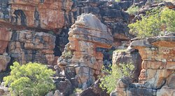 Amazing rock formations you will only find in the Kimberly. I think this is a Dinosaur?