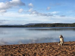 A picteresque Loch in scotland