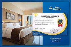 CHS Certification BW Papilio