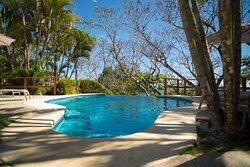 Tropical Suite Pool