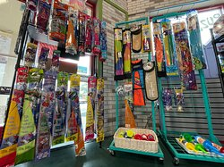 Bored outdoors? Check out our kite selection.