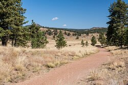 Petrified Forest Loop Trail