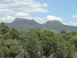Bears Ears Buttes from a distance