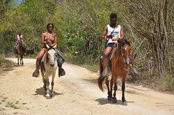 Balade à cheval, Parc National de l'est Horseback riding in National Park of the East Paseo a caballo en el Parque Nacional del Este