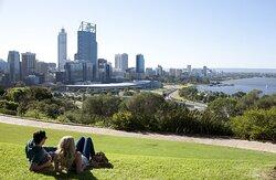 Perth Surrounds -  Kings Park