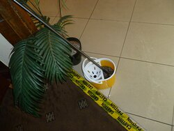 Mop and bucket left lying around in foyer near reception.