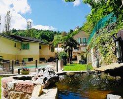 Jardin piscine et bassin poissons
