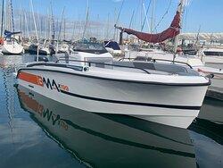 BMA X199