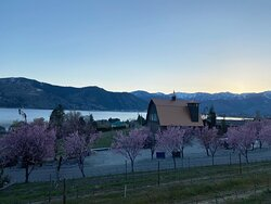 Spring at Cairdeas Winery
