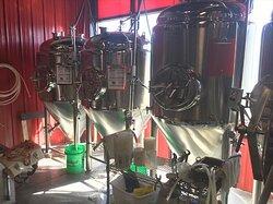 350 Brewing Company