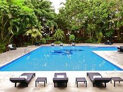 HS HOTSSON Hotel Tampico Alberca Frente