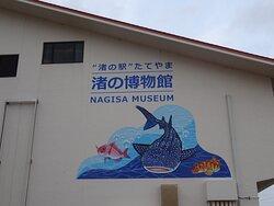 時間外(開館:9:00~16:45)で見れませんでしたが渚の博物館がとても気になりました。 ミニ水族館・さかなクンギャラリーなどがあるようです。